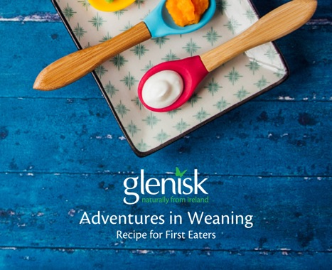 Adventures in Weaning eBook